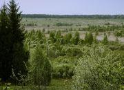 Участок в деревне Ильино